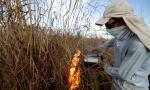 Naturatins inicia treinamento de queima controlada através do MIF