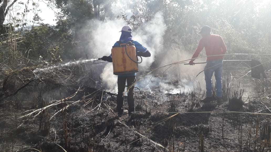 FOTO 01 - Naturatins encerra semana de treinamento de Brigadas Florestais Comunitárias - Crédito NMIF-Governo do Tocantins.jpg