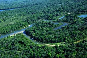 Governo do Tocantins aprova o incentivo e a parceria entre órgãos, representantes de seguimentos e comunidades na celebração da Semana do Meio Ambiente do Estado