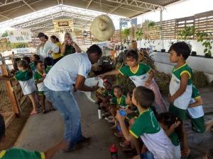 Projeto Fazendinha da Adapec em Gurupi