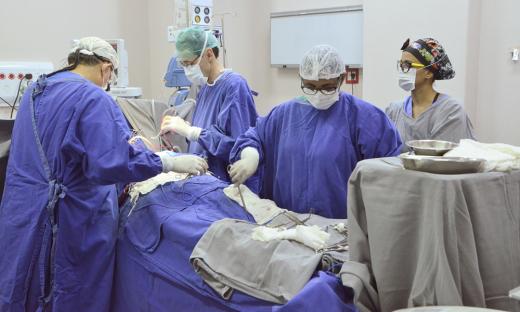 Equipe realiza a segunda cirurgia cardíaca no HGP, após a retomada do procedimento