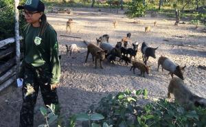 Fiscais do Naturatins vistoriam empreendimentos no Jalapão