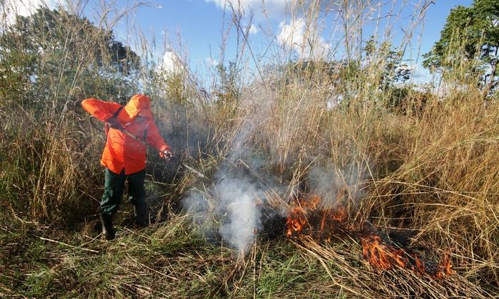 Os brigadistas selecionados  vão atuar na Prevenção e Combate aos Incêndios Florestais, nas Unidades de Conservação de Proteção Integral e seus entornos