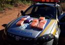 Tabletes de maconha foram apreendidos dentro de um ônibus interestadual, em Gurupi.