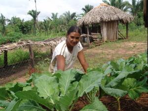 Cerca de 15 milhões de mulheres vivem na área rural, o que representa 47,5% da população residente no campo no Brasil.
