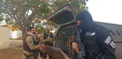 Policiais civis conduzem presos para recolhimento ao Sistema Prisional na Operação Place de Grève no Sudoeste do Estado