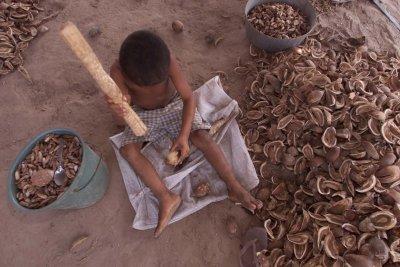 As causas que levam uma criança ao trabalho infantil costumam ser motivadas em grande parte pela situação familiar de pobreza que ela se encontra.
