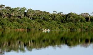 O Parque do Cantão, é considerado uma das áreas protegidas mais importantes da Amazônia brasileira