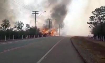 Além de provocar acidentes, as queimadas também destroem as placas de sinalização e prejudicam a fauna e flora