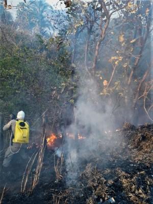 Local de difícil acesso é desafio no trabalho das equipes por terra no combate ao fogo