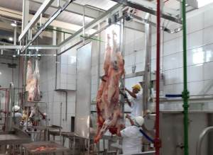 Matadouro frigorífico habilitado ao SIE é inaugurado em Nova Olinda