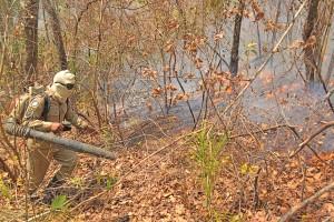 Terrenos com encostas apresentam desafios no combate aos incêndios florestais
