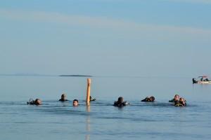Prática de mergulho ocorre nas águas do Lago de Palmas