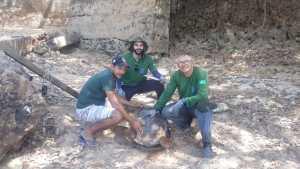 Ação conjunta para preservar a Tartaruga - da -  Amazônia
