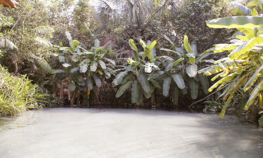 Fervedouro Salto, em Mateiros, Jalapão