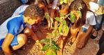 Estudantes da Escola Estadual Arlinda Rosa, de Couto Magalhães, plantam mudas de árvores
