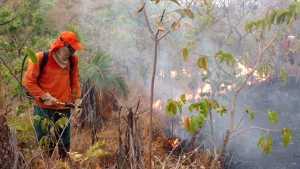 Brigadistas do Naturatins atuam no combate aos incêndios que ameaçam UC's estaduais