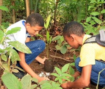 O Concurso de Redação tem temática ambiental