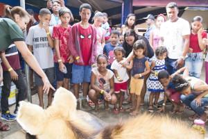 Animais empalhados chamaram a atenção dos visitantes, sobretudo as crianças