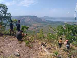 FOTO 05 – São constantes os registros das características da região e da unidade de conservação_Divulgação Naturatins_300.jpg