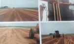 Polícia Civil prende três servidores públicos pela execução de obra em fazenda particular em Peixe
