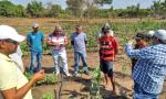 O Convênio Oportunidade tem como objetivo fortalecer os serviços de assistência técnica e extensão rural