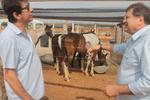 Secretário conversa com produtor de cavalo na Pecshow