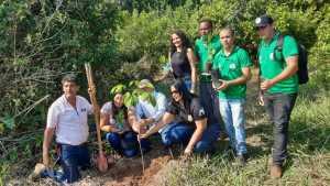 Equipe da Regional do Naturatins de Araguatins e parceiros realizam plantio de mudas