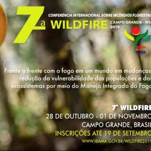 7a. Wildfire 2019 - Cartaz