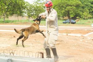 Soldado Alef  e Sky no treinamento