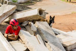Treinamento com os cães do CBM usa uma série de técnicas de busca em área colapsada