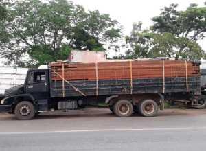 Caminhão transportava madeira sem documentação obrigatória