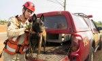 Certificação ocorreu em São Luís – MA, nesta quarta-feira, 13, durante evento com bombeiros militares de todo o país; Sky é o primeiro cão certificado na região Norte do Brasil