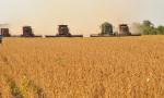 A Agropecuária obteve a maior variação em volume entre os três grupos de atividades, 26,7%