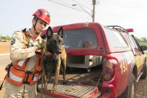 Sargento Mollo com a cadela Sky, única certificada no Norte do Brasil para buscas em áreas colapsadas