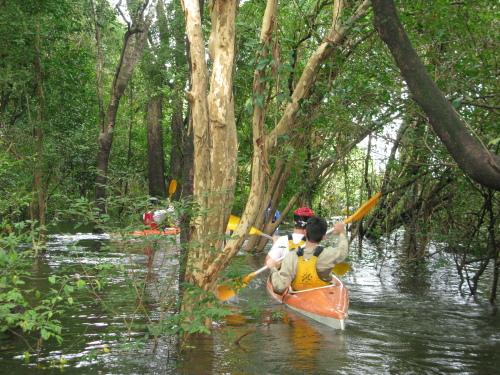 Trilha aquática no Parque Estadual do Cantão