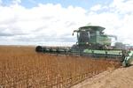 A soja é carro-chefe da produção de grãos