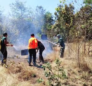 Brigadistas em combate ao fogo na Unidade de Conservação