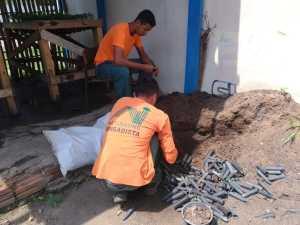 Brigadistas coletam as sementes e fazem a seleção antes de estocar
