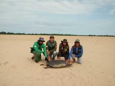 PM atua em projeto Quelônios da Amazônia