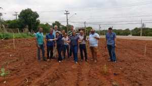 Servidores do Ruraltins realizam plantio de mudas nativas e frutíferas em área adotada