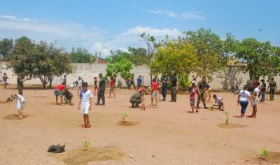 As árvores vão proporcionar sombra para os estudantes  e melhorar o clima na escola