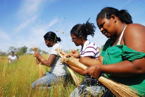 Comunidade Mumbuca ficou famosa pelo capim dourado e hoje tem receptivo