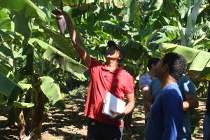 Programas, convênios e parcerias levam assistência técnica continua aos produtores rurais do Estado.
