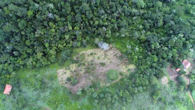 Serão recuperado 3 hectares de áreas degradadas