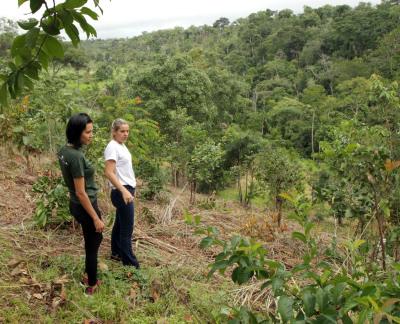 Equipe Semarh e 8 Billion Trees na preparação do terreno