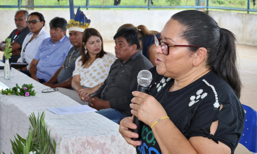 Coordenadora do Programa Escola Jovem em Ação, Maristélia Alves, explicou que  a implantação do programa ocorrerá por etapas e contempla o ensino médio
