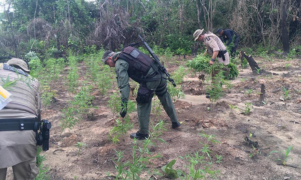 Aragominas Tocantins fonte: central3.to.gov.br
