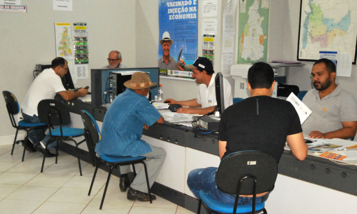 Servidores da Adapec estão à disposição para orientar os produtores rurais a terem acesso a ferramenta on-line