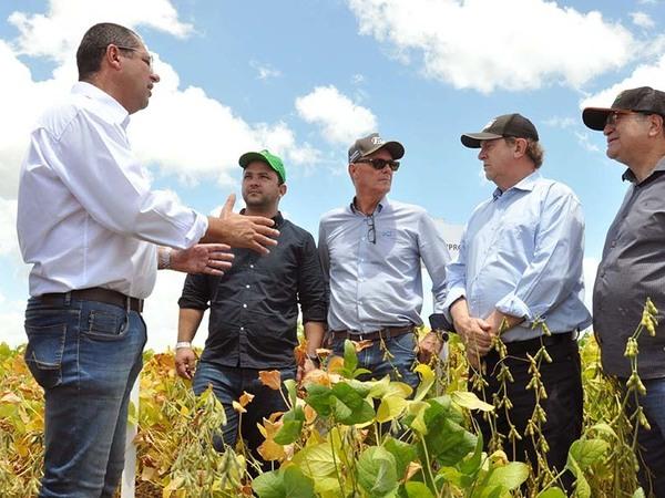 Evento teve como objetivo a formação técnica dos associados, produtores e agrônomos de Paraíso e região